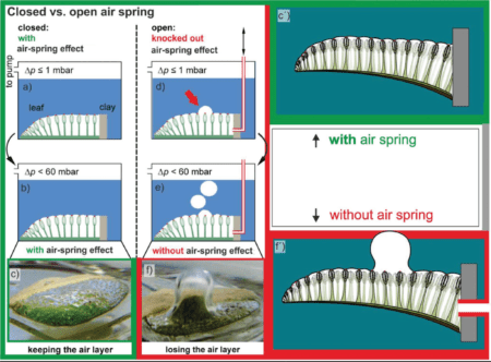 air spring effect 2