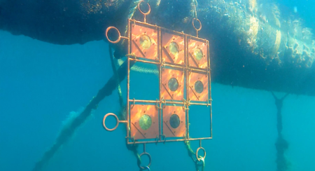 samples under water 2